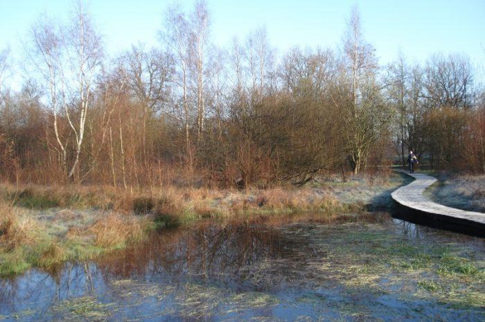 10 maart 2007 : Hasselt (42 km)