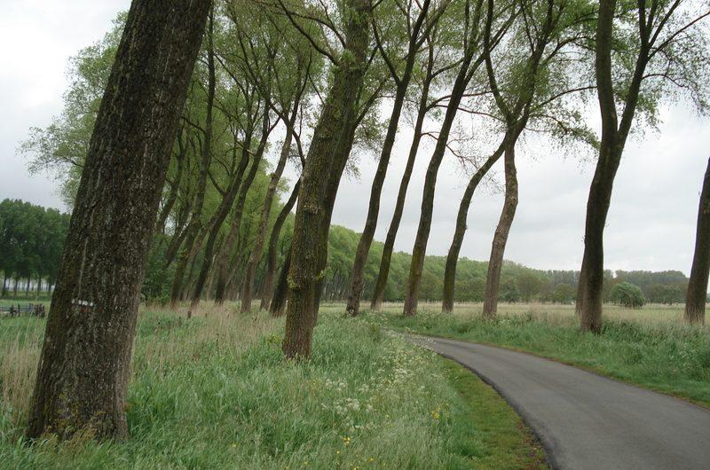 12 mei 2007 : Oedelem (71km)