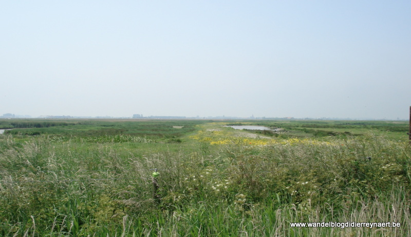 2 juni 2007 : De Haan (Euraudax) (50 km)