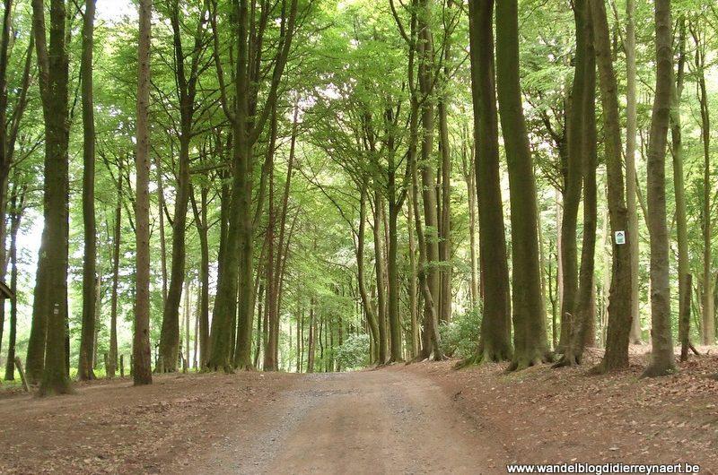 28 juni 2008 : Avelgem (43 km)