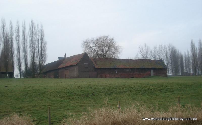 21 februari 2009 : Lauwe (Euraudax) (50 km)