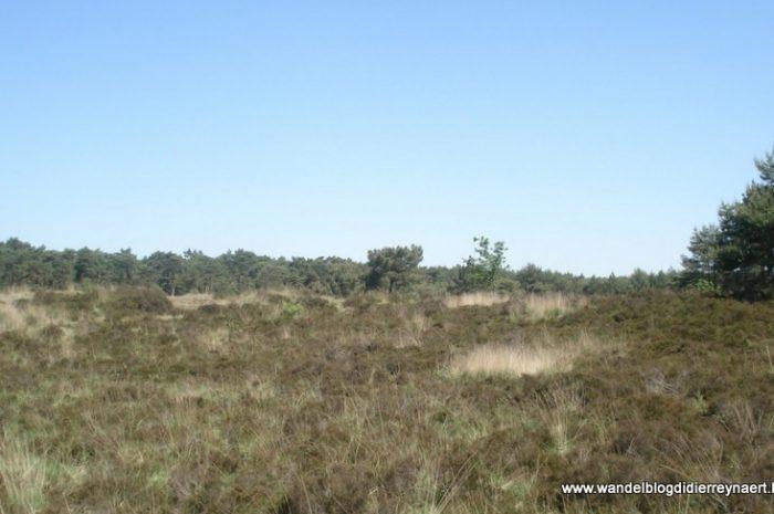 30 mei 2009 : Ossendrecht (Nl) (40 km)