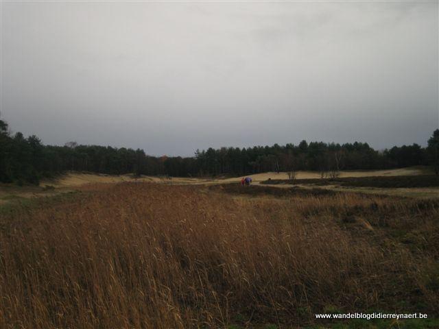 28 november 2009 : Bergen-op-Zoom (Nl) (40 km)