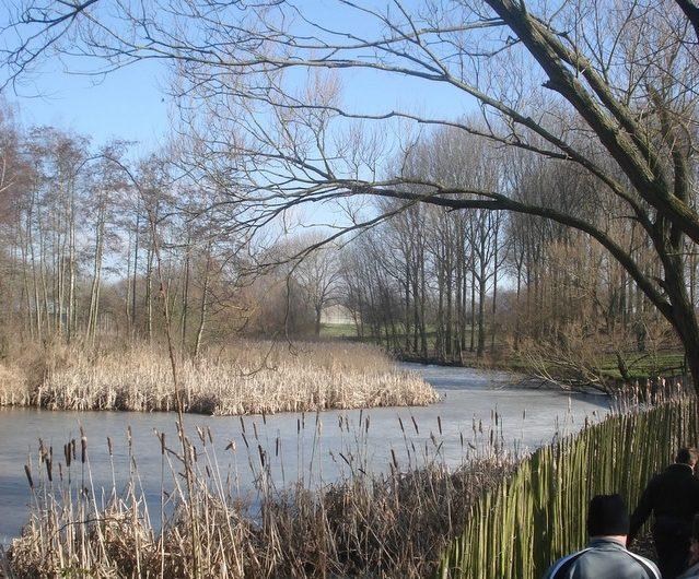 20 februari 2010 : Lauwe (Euraudax) (50 km)
