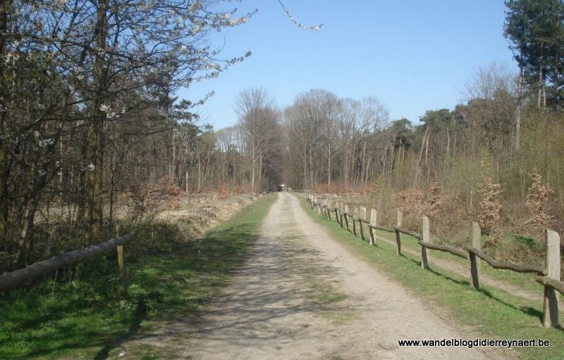 17 april 2010 : Zonnebeke (50 km)