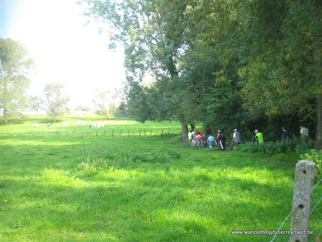 18 september 2010 : Haaltert (Euraudax) (150 km)