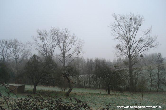 5 maart 2011 : Tubize (42 km)
