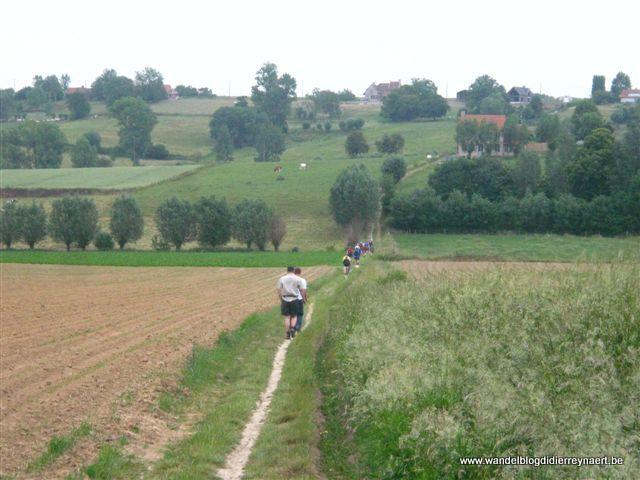 5 juni 2011 : Kluisbergen (50 km)