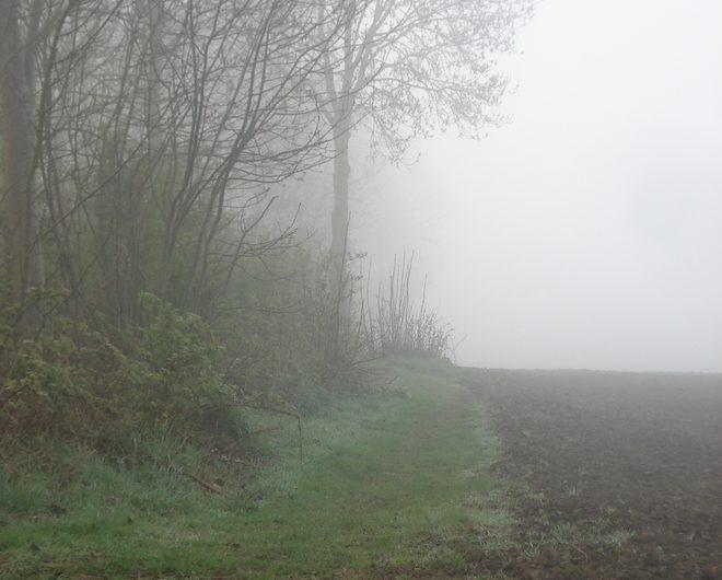 14 april 2012: Kaaswandeltocht (2012) Zonnebeke 60km