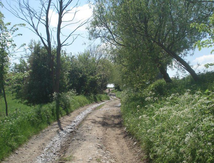 Adeps-wandeling in Lamain