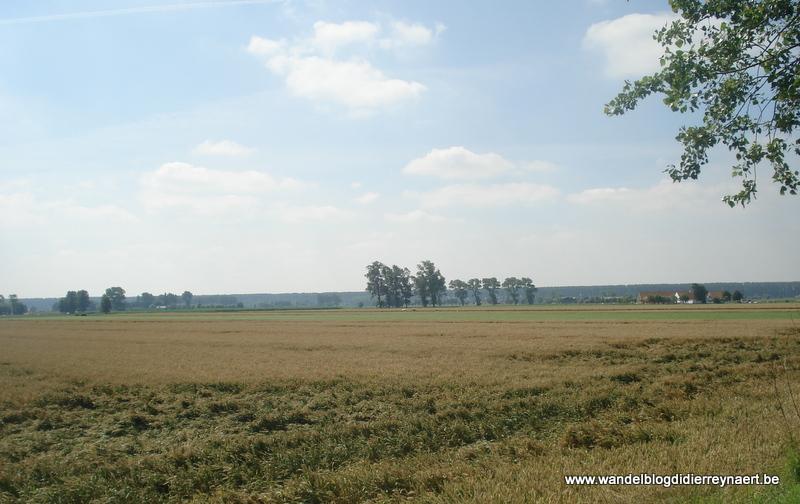 22 juli 2012 : Lapscheure (19km)