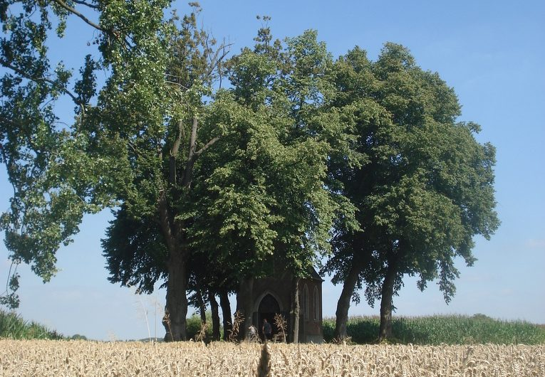 11 augustus 2012 : Lennik (34km)