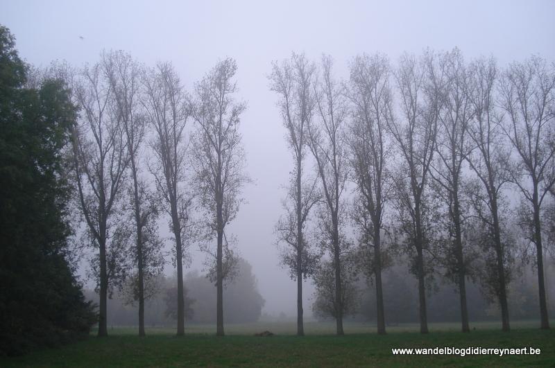 21 oktober 2012 : Ville-Pommeroeul (Adeps) : (20km)