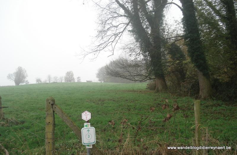 24 november 2012 : Mazenzele (50km)