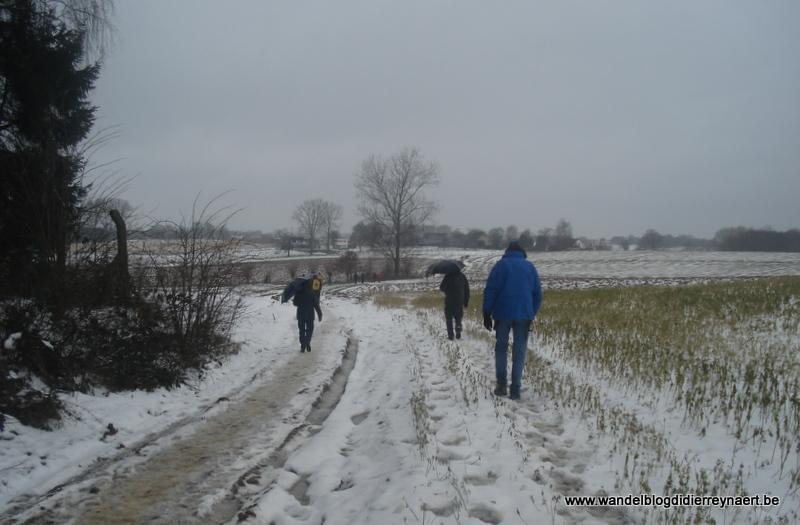 27 januari 2013 : Brussel-Geraardsbergen (50km)