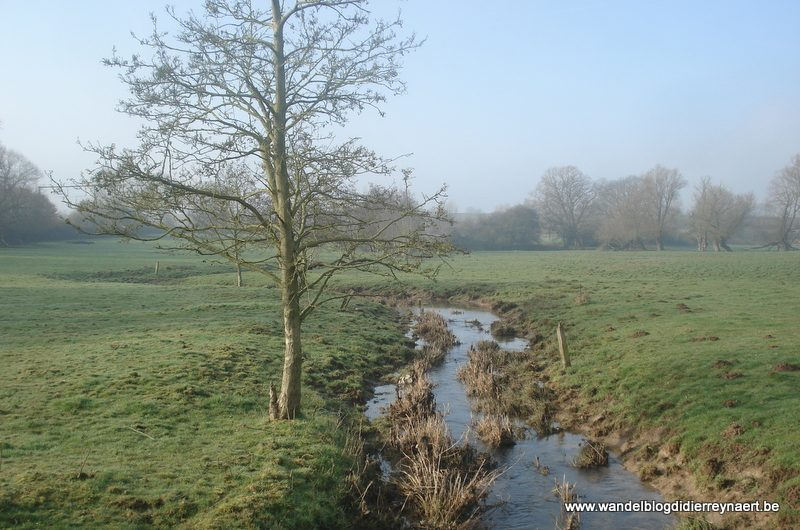 17 februari 2013 : Naast (Adeps) (20km)