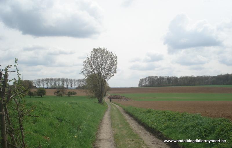 27 april 2013 : Velaine-sur-Sambre (50km)