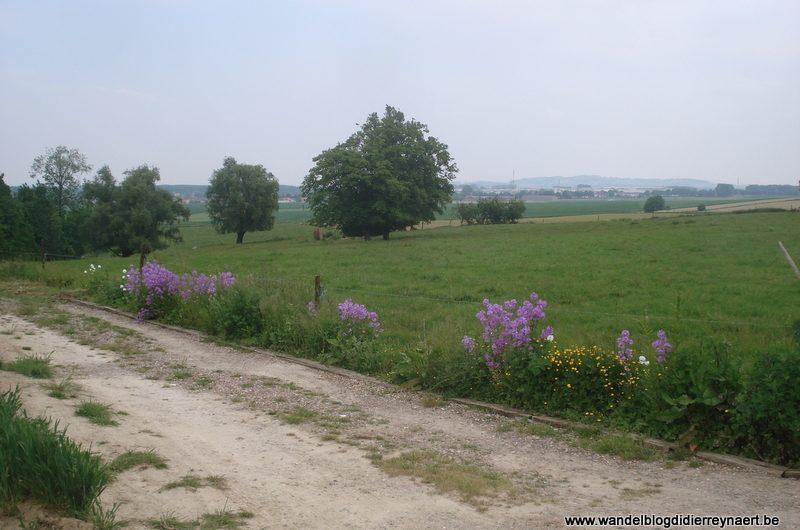 9 juni 2013 : Lamain (Adeps) (20km)