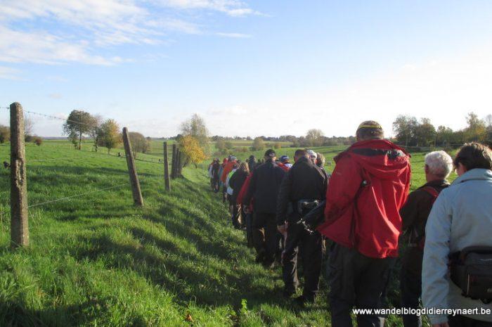 9 november 2013 : Rixensart (Euraudax) (50km)