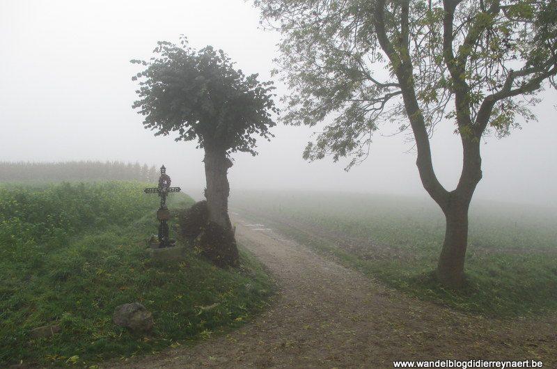 16 november 2013 : Hermée (Oupeye) (50km)