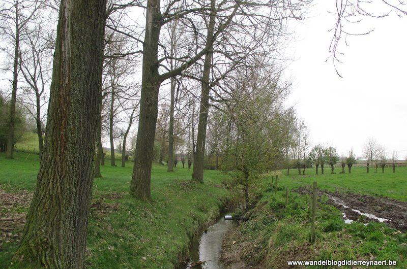23 november 2013 : Schorisse (24km)