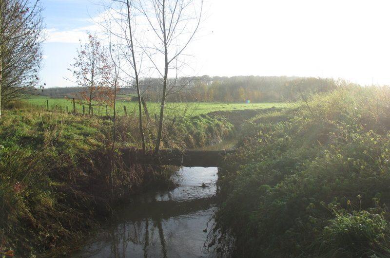 30 november 2013 : Lierde-Gontrode (GR-Stationsstapper) (40km)