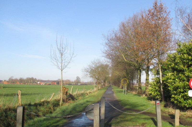 2 maart 2014 : Torhout (10km)
