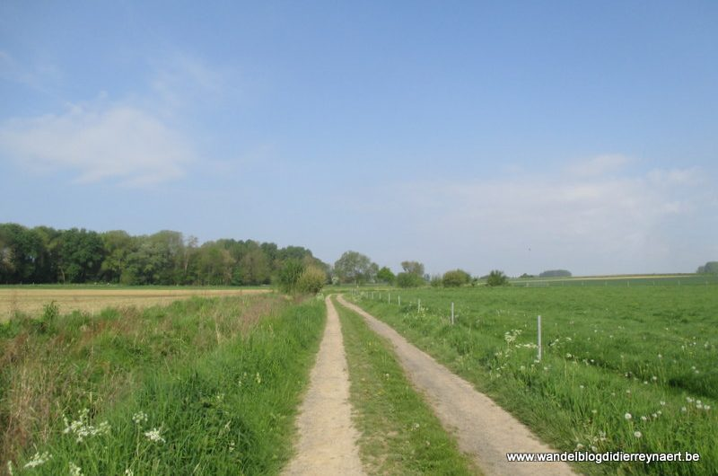 1 mei 2014 : Rumes (Adeps) (20km)