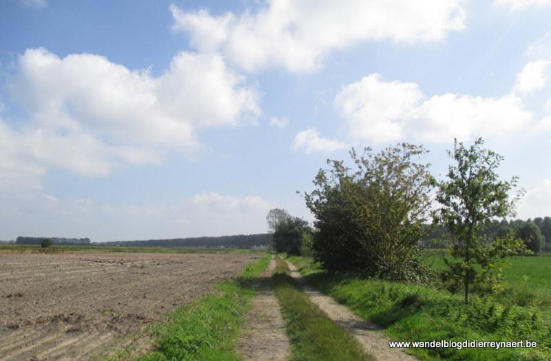 13 september 2014 : Lapscheure – Sint-Margriete (GR5A Noord) (20km)+ 9 km naar Eeklo