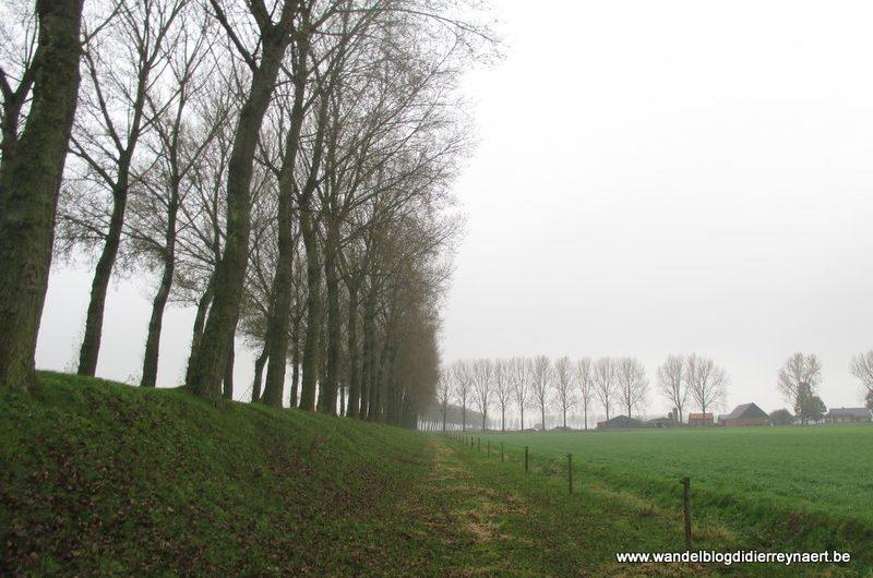 25 oktober 2014 : Zuiddorpe (Nl) – De Klinge (GR5A Noord) (31 km)