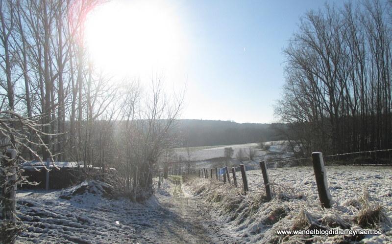 28 december 2014 : Ellezelles (Adeps) (21 km)