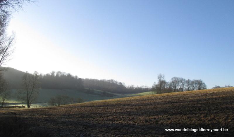17 januari 2015 : Kluisbergen (25 km)