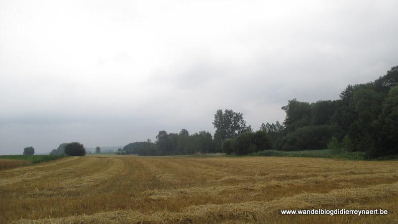 19 juli 2015 : Wodecq (Adeps) (20 km)