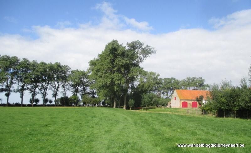 6 september 2015 : Nieuwmunster (24 km)