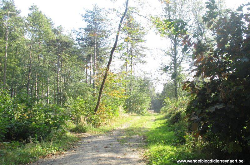 3 oktober 2015 : Zonnebeke (Euraudax) (50 Km)