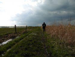 5 maart 2016: Rollegem-Zandvoorde (GR5A Zuid) (30 km)