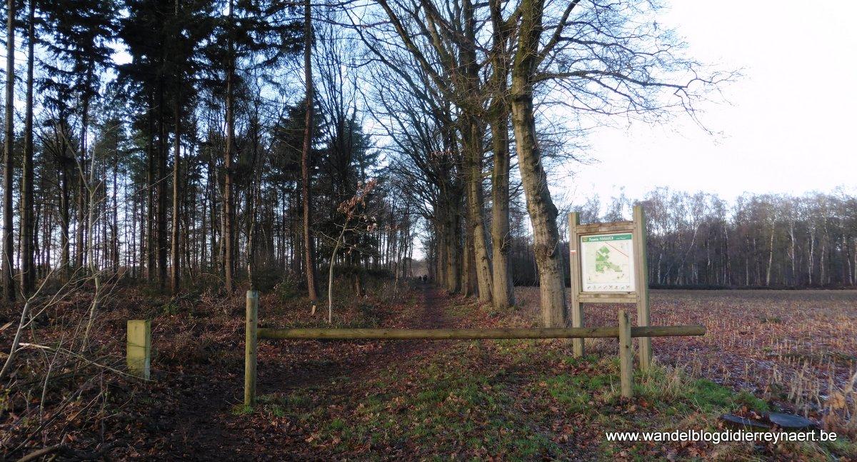 26 december 2016: Aalter (22 km)