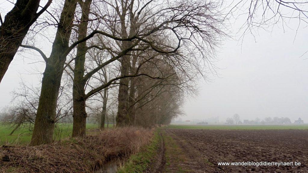 in de vallei van de Douvebeek op weg naar Wulvergem