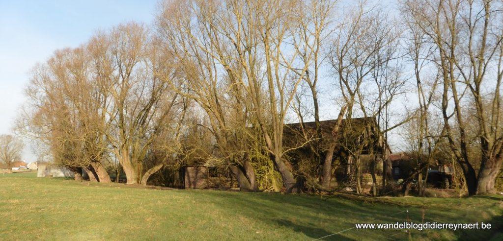 boerderij in Rollegem