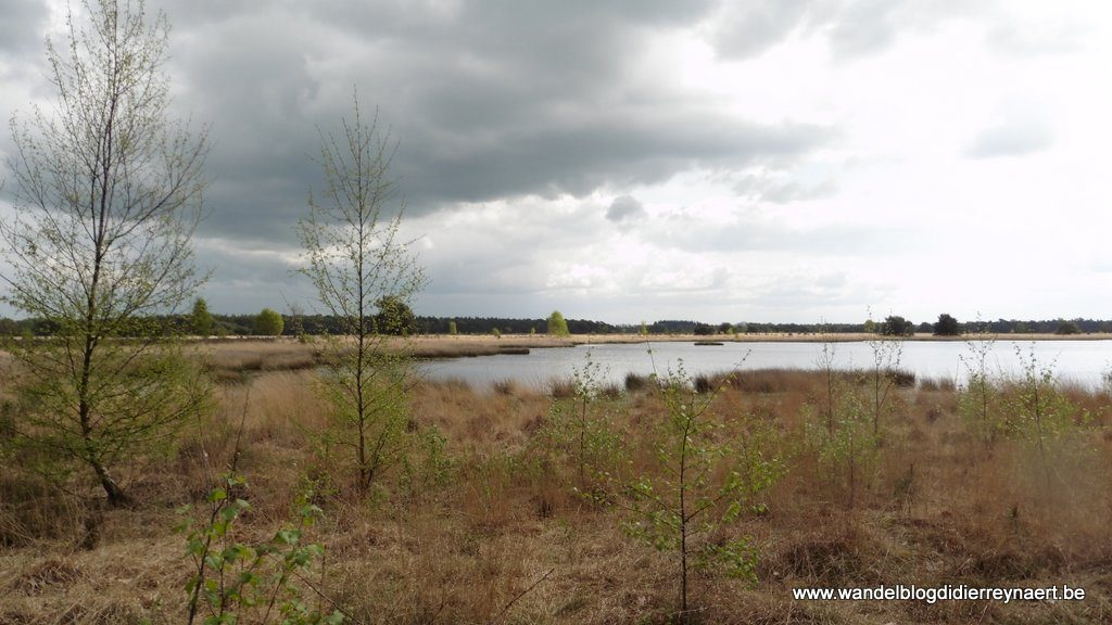 het ven Keijenhurk (Landschotse Heide)