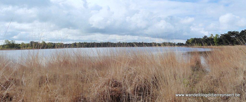 het ven Keijenhurk in de Landschotse Heide