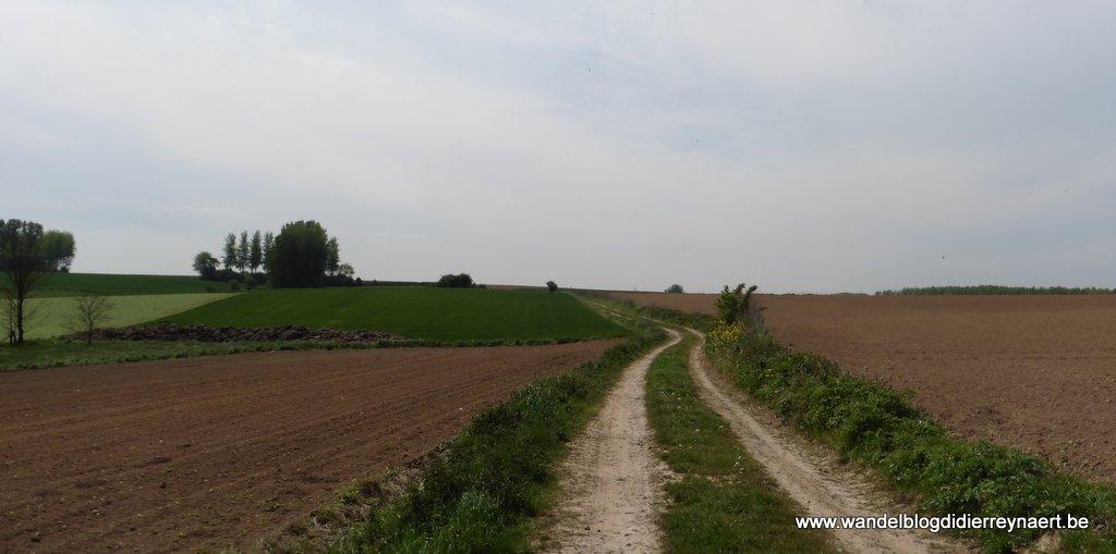 Kilometerslange veldweg naar Mévergnies-Lez-Lens