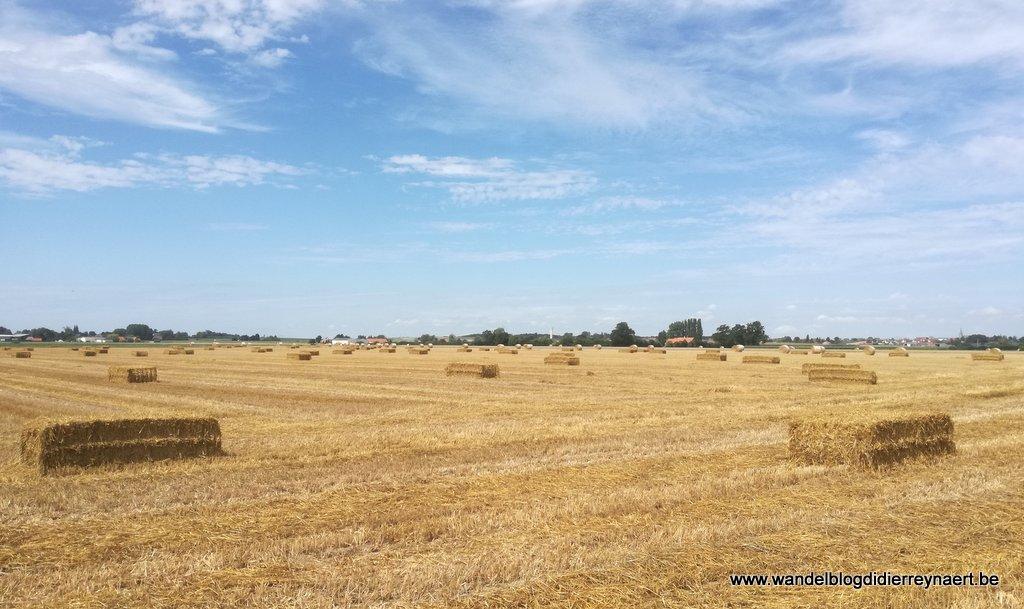 1 augustus 2017: Bollezeele (Fr) (24 km)