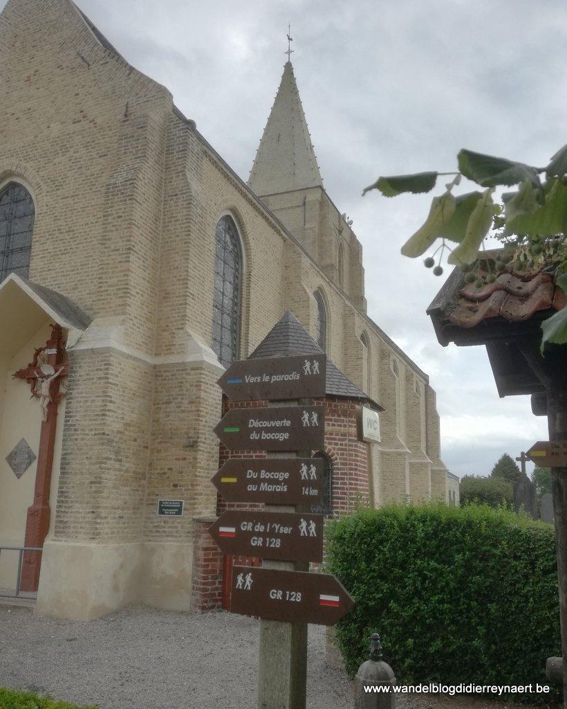 wandelboom bij de kerk van Buysscheure