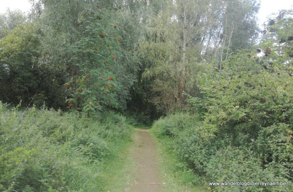natuurgebied Neerbeekvallei Bissegem