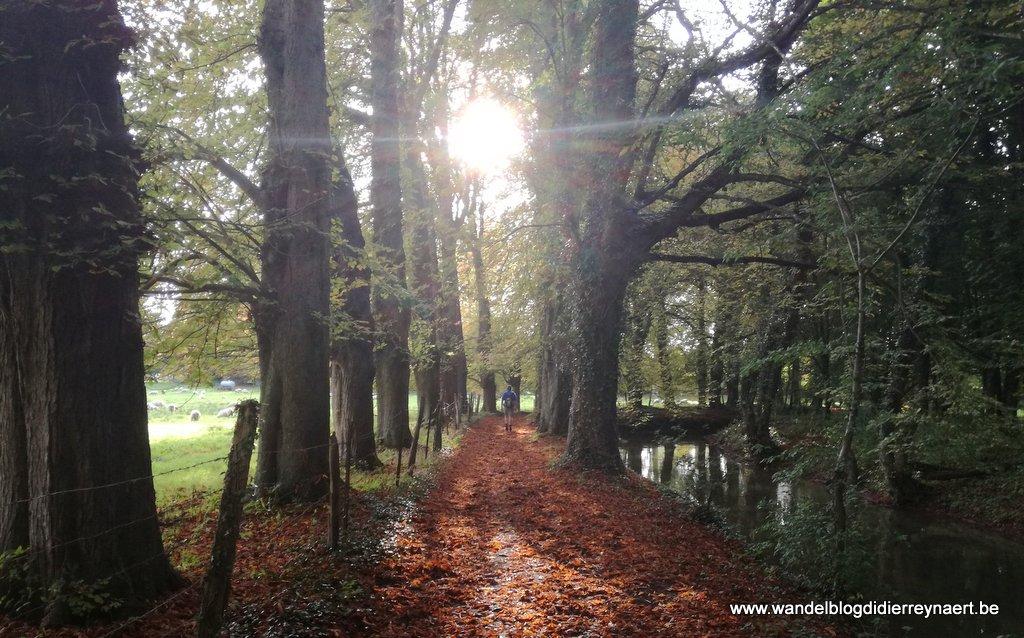 2 september 2017: Avesnes-le-Comte – Frévent (FR) (GR121) (25 km)