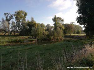weilanden langs het Spiere-kanaal