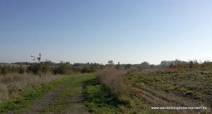 natuurgebied Haneveld in Zonnebeke