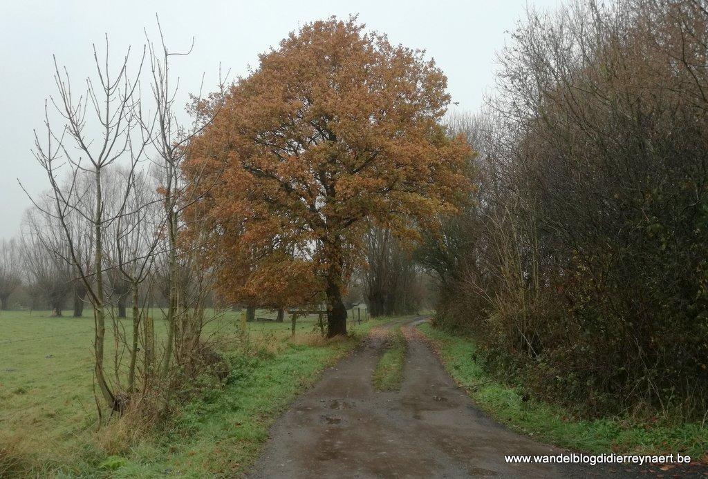 onverharde wegel Bury