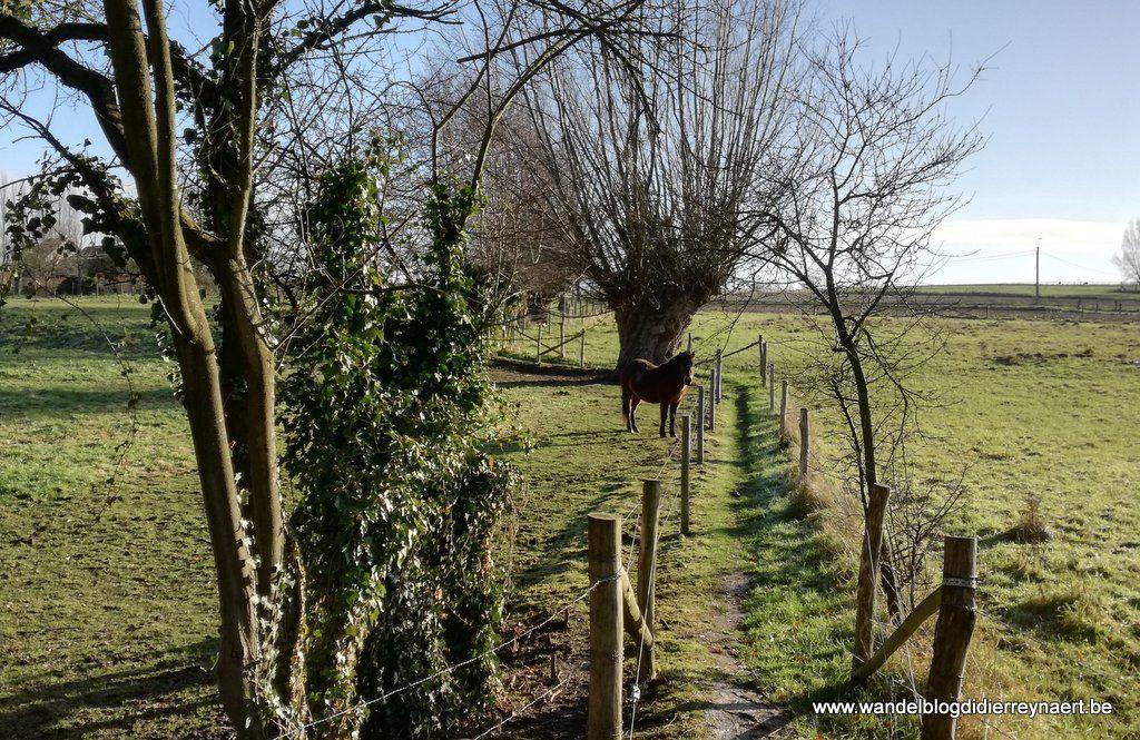 wandelnetwerk Zwalmvallei